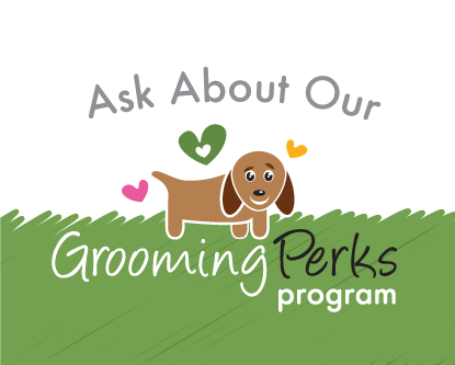Grooming Perks | Pleasant Park Kennels