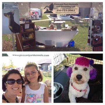 All set up for another fun day at WoofaRoo with the cutest helpers ever!