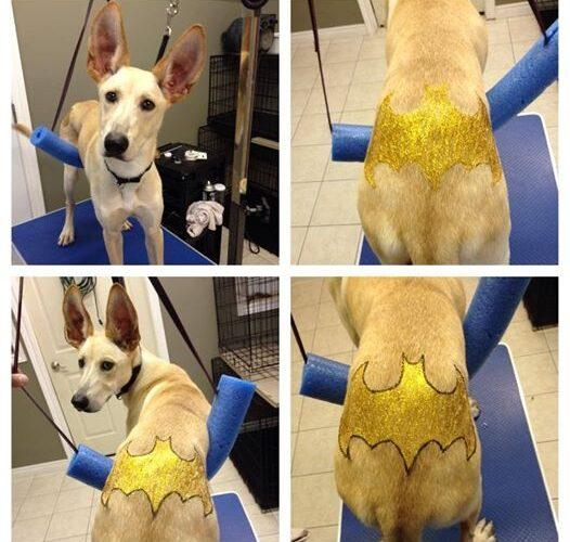 Batman gets a Tattoo!